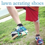 lawn aerating shoes