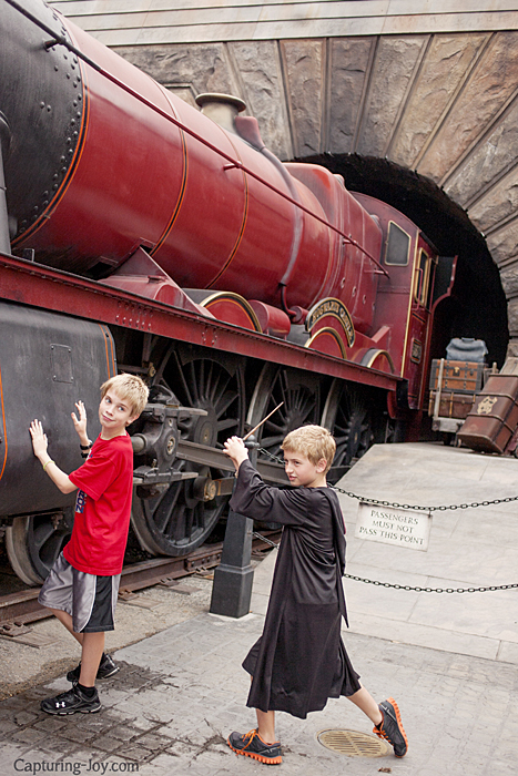 Harry Potter Train