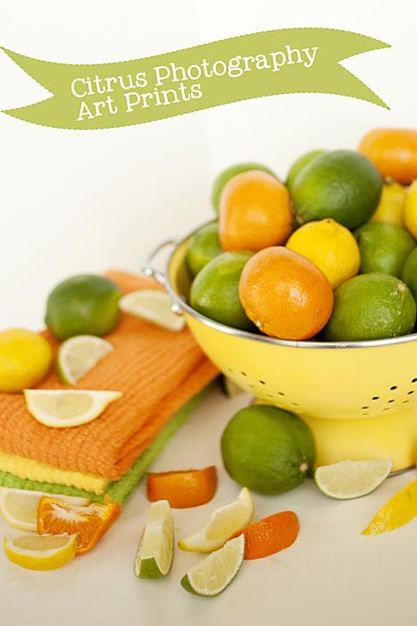 Citrus Photography Art Prints