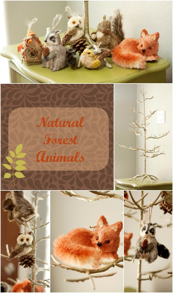 Natural Forest Animals