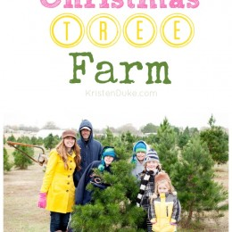 family at the tree farm
