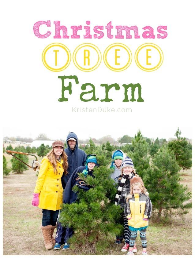 family at the tree farm