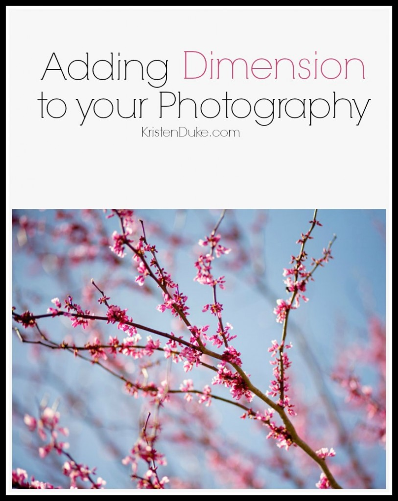 Adding Dimension to photography