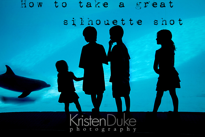 How to take a silhouette picture