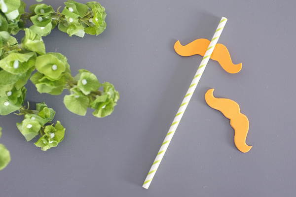 St. Patrick's Day Silly Straws | Teal & Lime from kristendukephotography.com