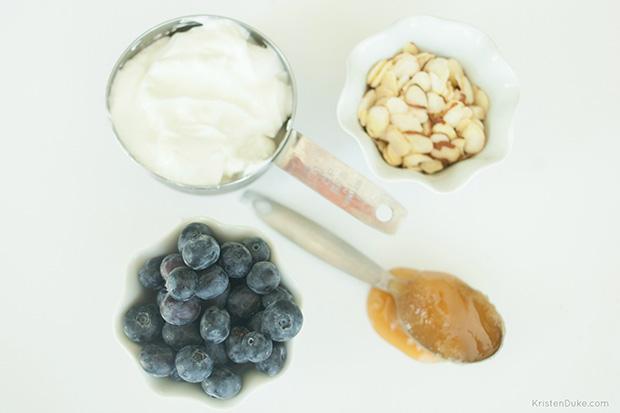 4 ingredient protein bites
