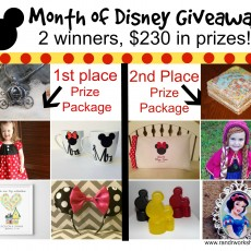 month of disney giveaway picture