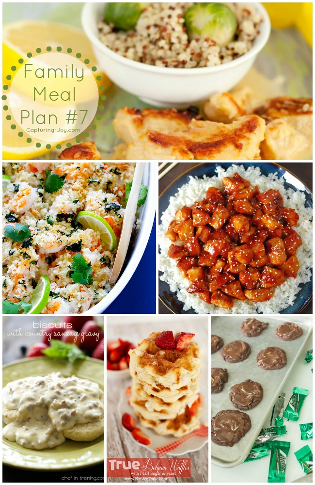 family meal plan 7