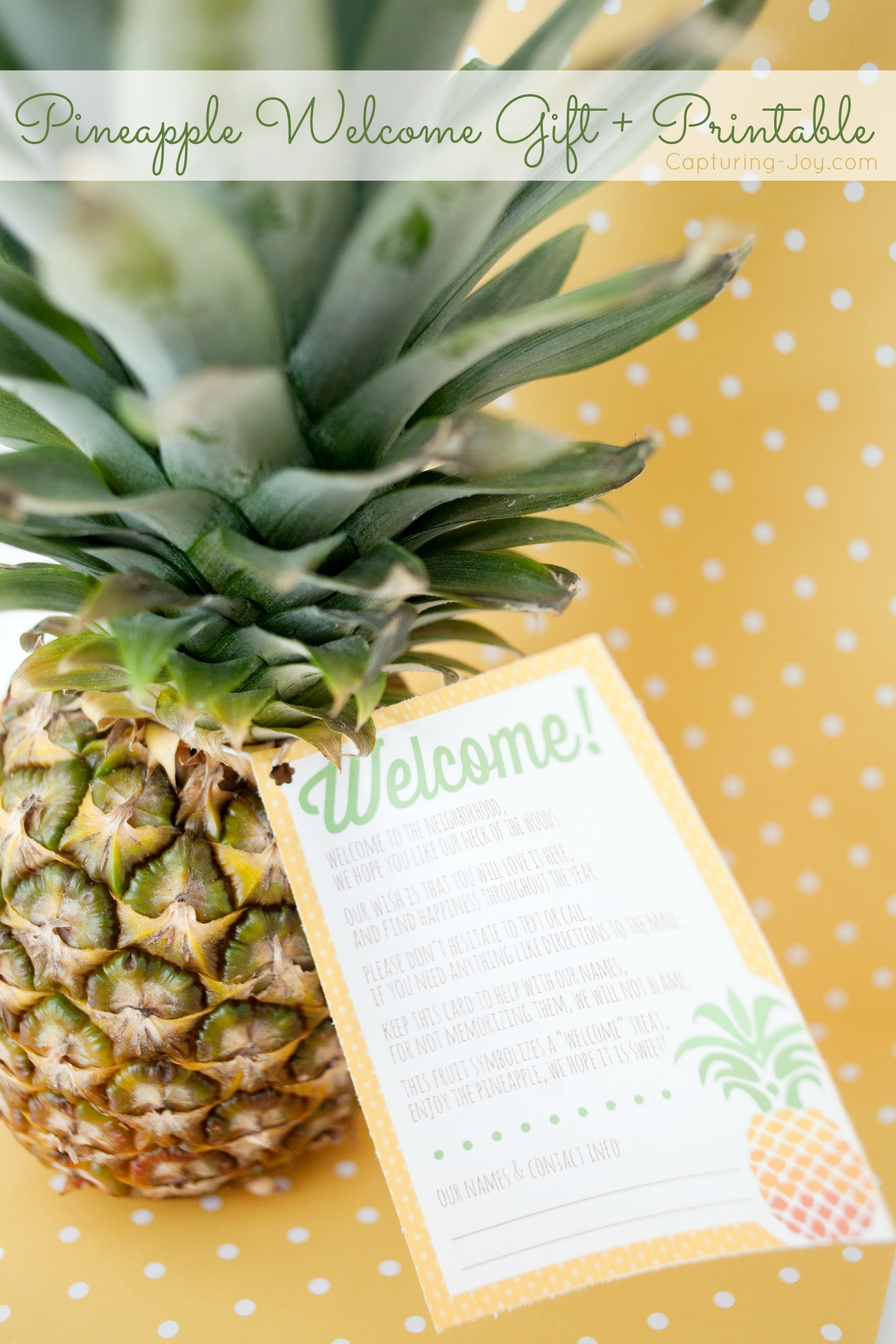 photo about Welcome to the Neighborhood Printable titled Welcome in direction of the Community Pineapple Present + Printable
