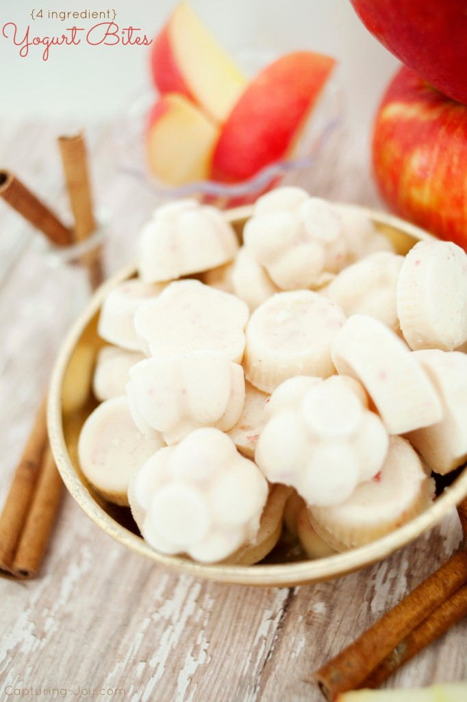 How to Make Apple Cinnamon Yogurt Bites