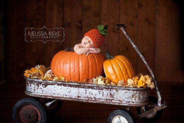 Baby Pumpkin Wagon