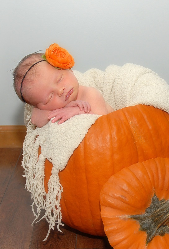 halloween and pumpkin photography ideas. Black Bedroom Furniture Sets. Home Design Ideas