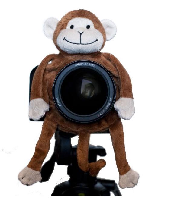 Photographer gift idea monkey shutter hugger