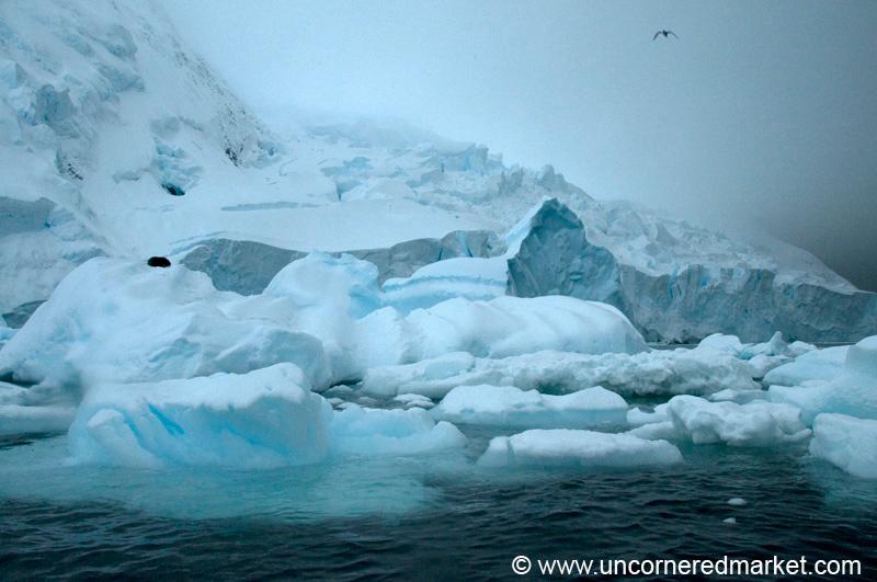 Antarctica_5