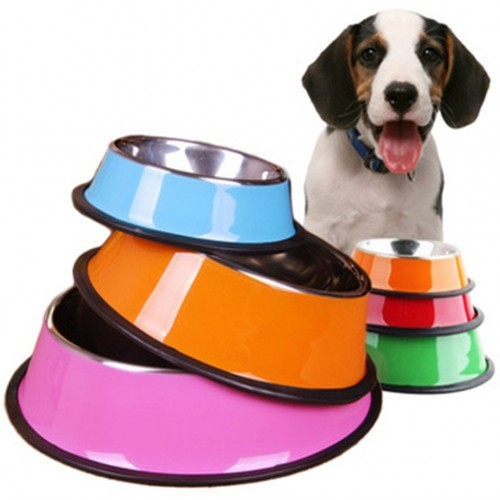colorful dog water dish