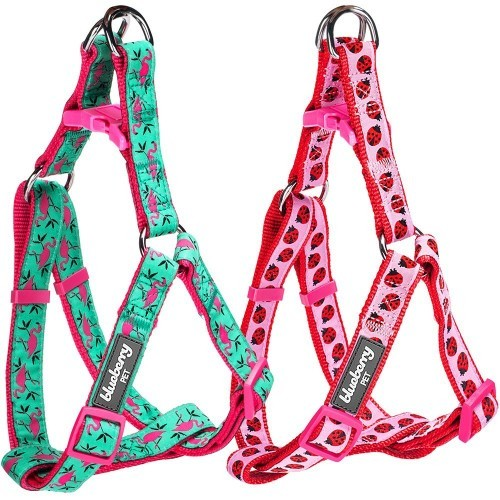 cute dog harness