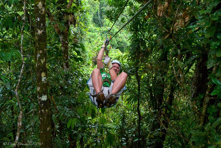 fiji canopy tour