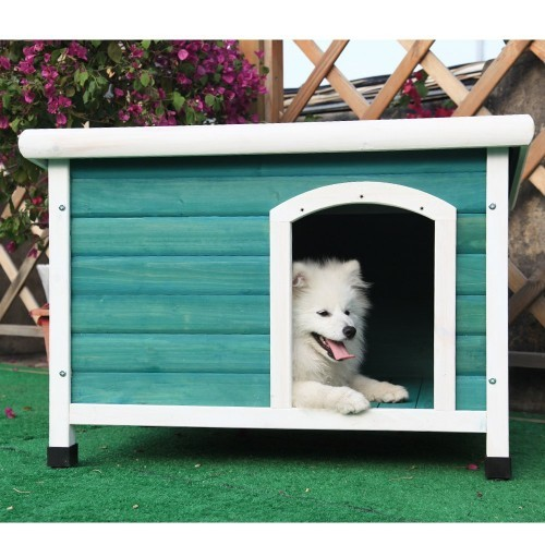 colorful outside dog house