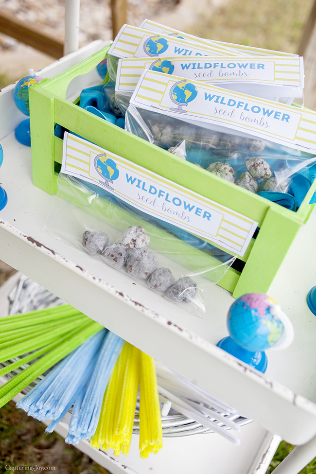 Earth Day Printable Wildflower Seed Bombs