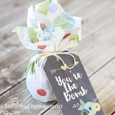 Printable You are the Bomb Gift Tags for Mother's Day, Teacher appreciation or birthday gift idea.