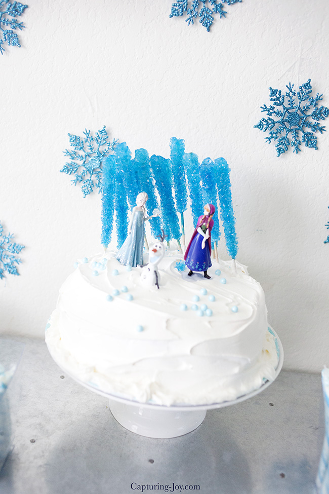 Frozen Birthday Party Capturing Joy With Kristen Duke