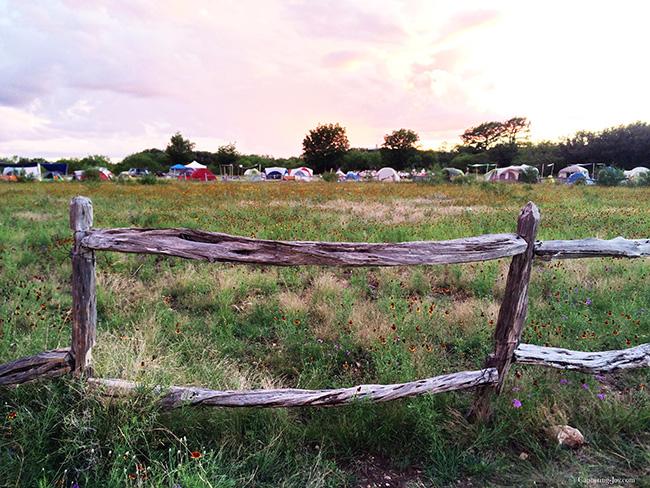 meadow of flowers camping on trek