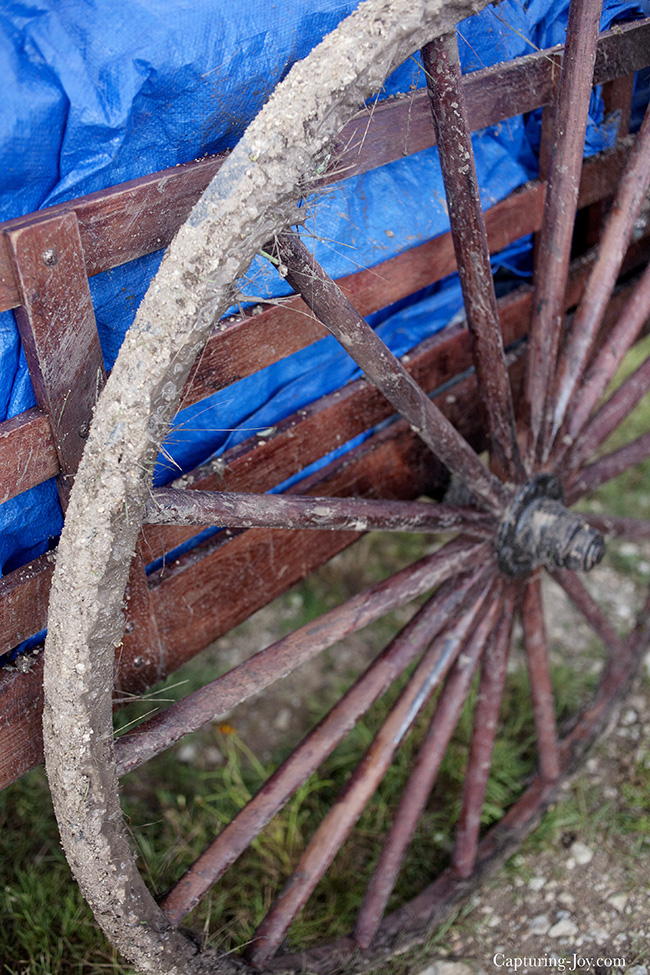 muddy wagon wheel on pioneer handcart trek