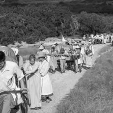 mormon pioneer wagon train