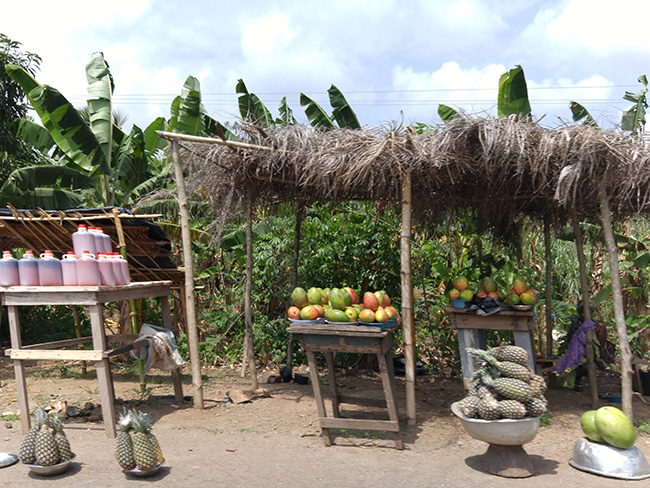 fresh fruit in Ghana