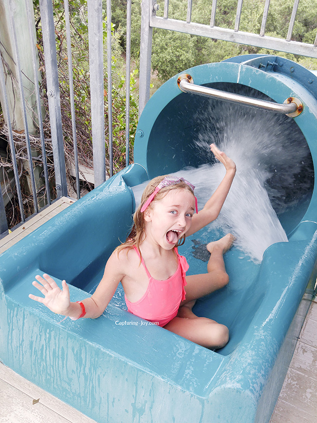 water slide picture