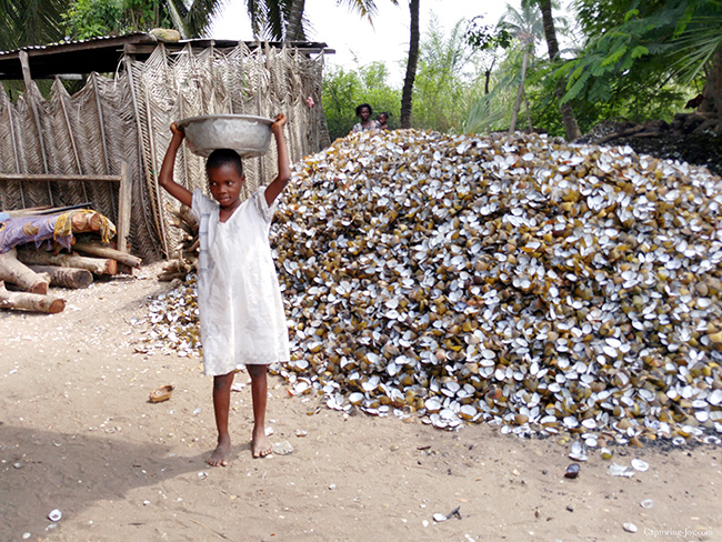 pile of oyster shells in Ghana