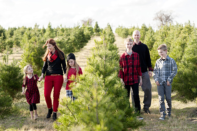 Family photos in Buffalo plaid at Christmas Tree Farm