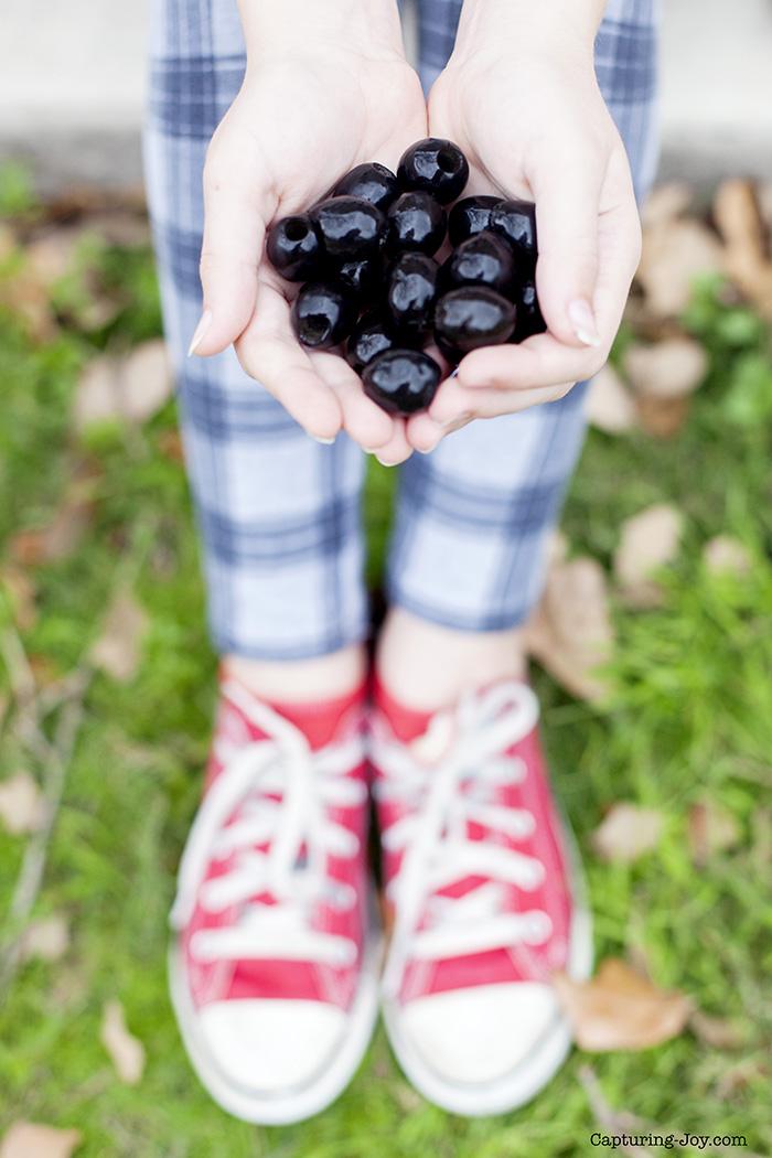 california black olives