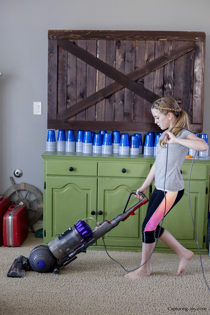 Dyson Ball Animal Vacuum Review