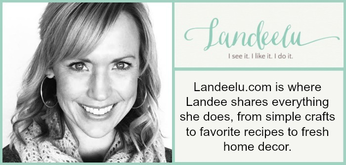 Meet Landeelu blog Info