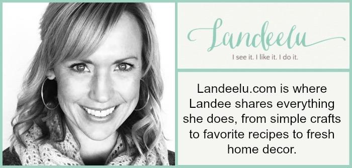 Meet Landeelu blog Info