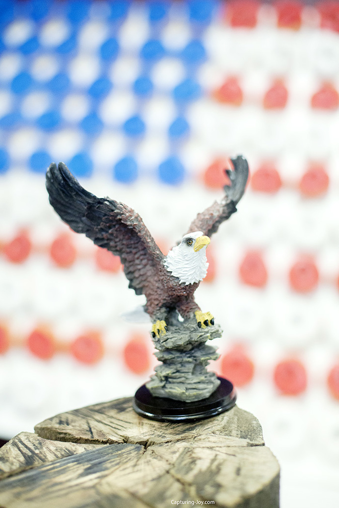 Soaring Eagle for Cub Scout award