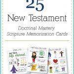 New Testament Scripture Mastery memorization cards