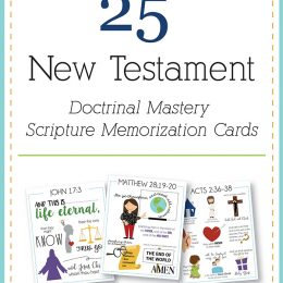 25 New Testament Scripture Memorization Cards