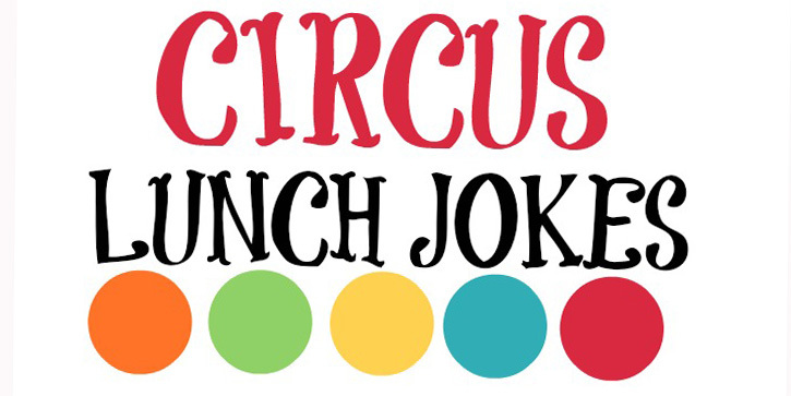 Circus Lunch Box Jokes Capturing Joy With Kristen Duke
