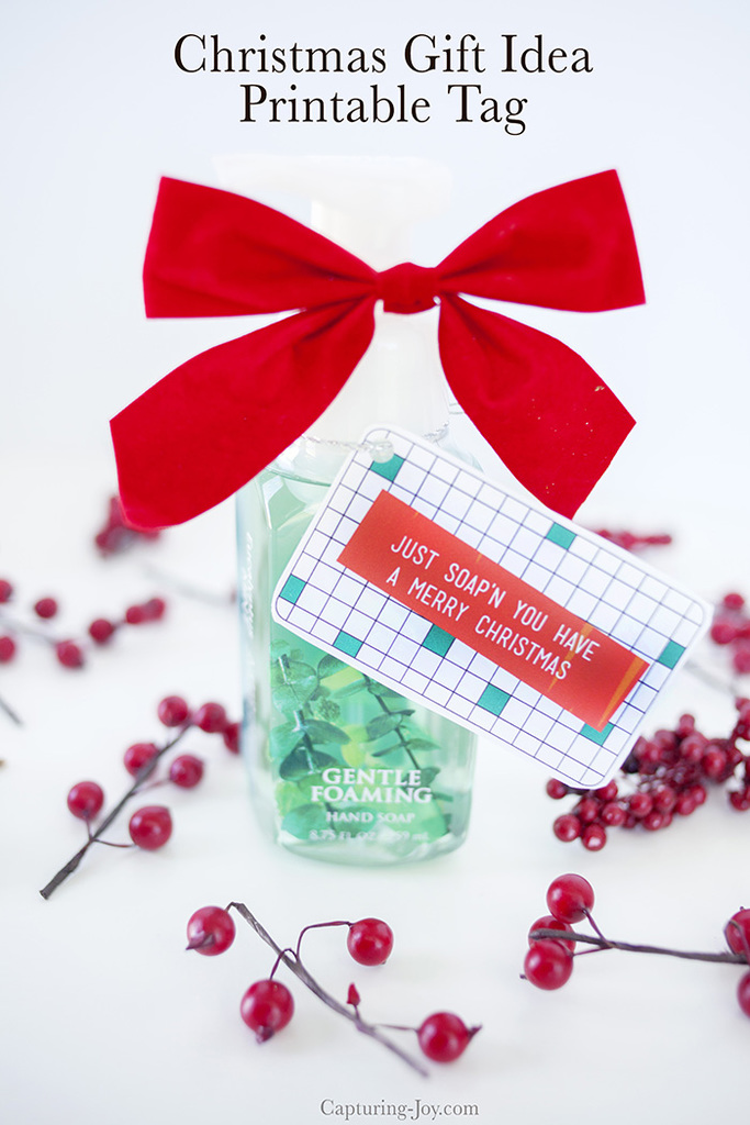 Soap Christmas Gift Idea Hand Soap Teacher Gift And