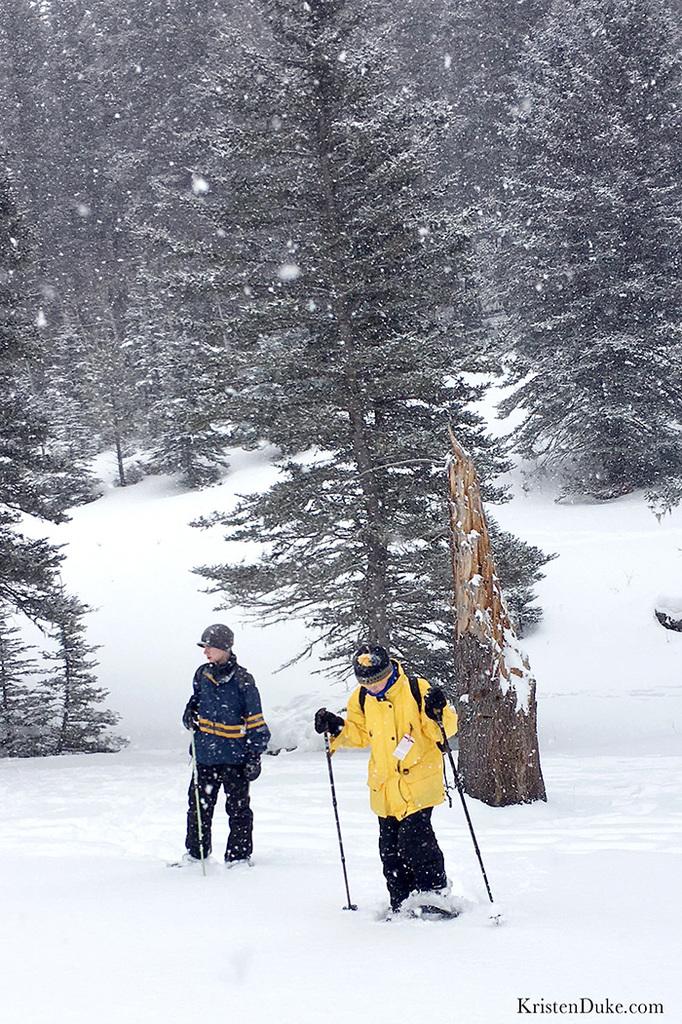 wilderness hiking in Taos