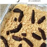 Super Simple April Fools Day Prank Edible Kitty Litter