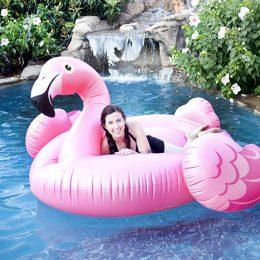 Flamingo Pool Float Pictures