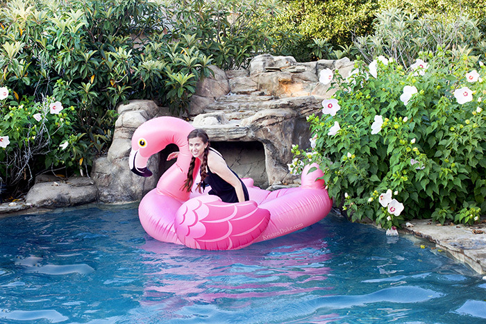 Flamingo Pool Float Pictures