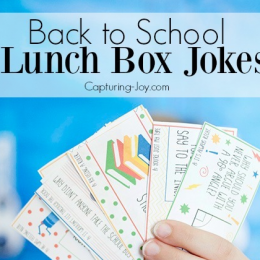 School Lunch Notes