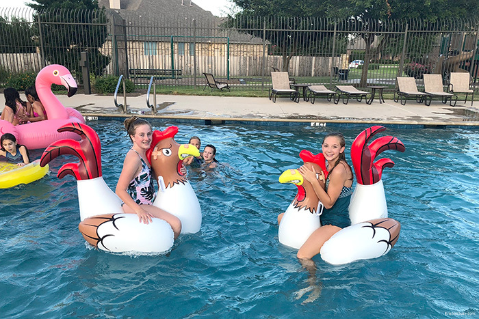 chicken fight inflatables