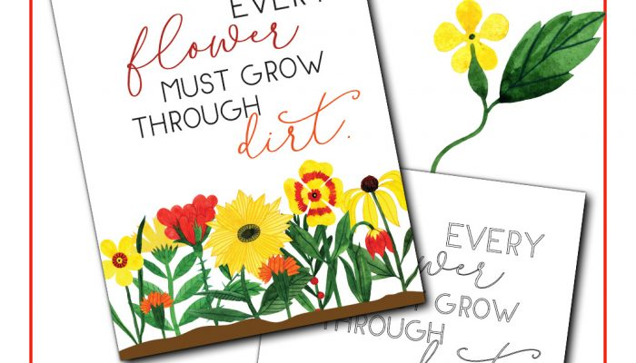 Adversity Quote Every Flower Must Grow Through Dirt